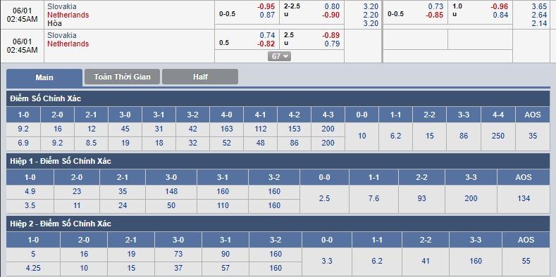 Slovakia-vs-Ha-Lan-Loc-da-cam-lai-noi-1h45-ngay-1-6-Giao-huu-Quoc-te-Friendlies-5