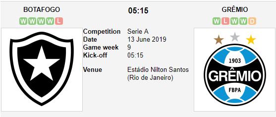Botafogo-vs-Gremio-Tiep-da-chien-thang-05h15-ngay-13-6-giai-VDQG-Brazil-Serie-A-1